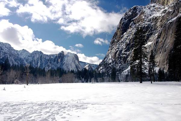 Yosemite Art Print featuring the photograph Yosemite Meadow In Winter by Michael Courtney
