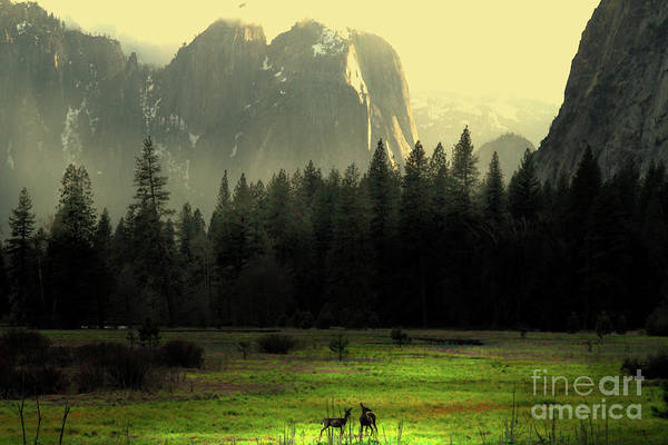 Landscape Art Print featuring the photograph Yosemite Village Golden by Wingsdomain Art and Photography