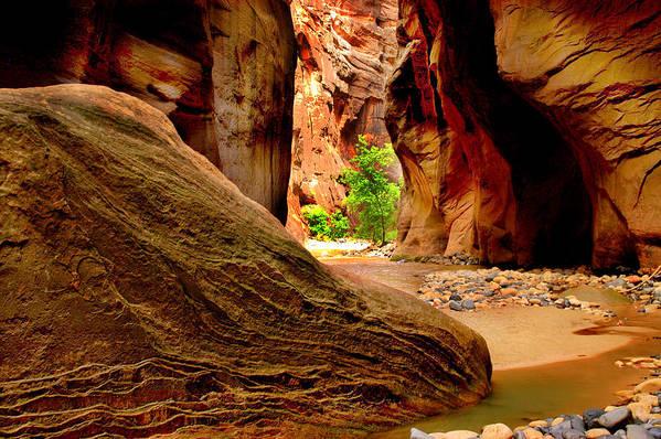 Landscape Art Print featuring the photograph Zion Canyon by Matthew Altenbach
