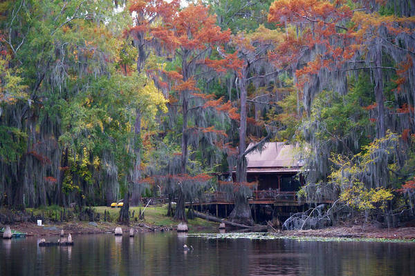 Karnack Texas Art Print featuring the photograph A Bayou Retreat by Lana Trussell