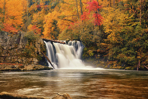 Abrams Falls Art Print featuring the photograph Abrams Falls Autumn by Greg Norrell