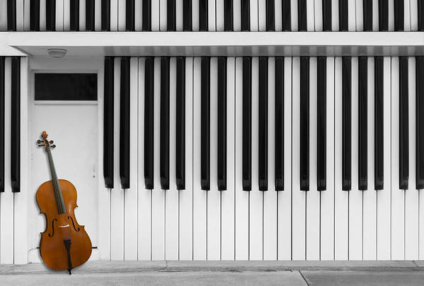 Zebra Art Print featuring the photograph Cello At The Door by Jacqueline Hammer