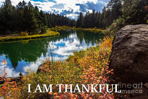 I Am Thankful Art Print featuring the photograph I Am Thankful by G Matthew Laughton