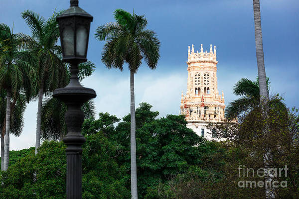 City Art Print featuring the photograph Old Hotel With Palm Trees In Havana by Terekhov Igor