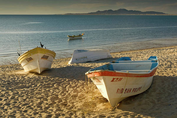 Bahia State Art Print featuring the photograph Panga Boats On Beach Along Bahia De San by Witold Skrypczak