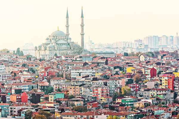 Crowd Art Print featuring the photograph View Over Istanbuls Dense Residential by Stefan Holm