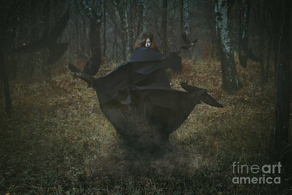 Magic Art Print featuring the photograph Witch Of The Forest With Her Crows by Captblack76