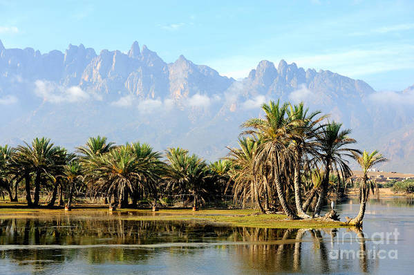 Oasis Art Print featuring the photograph Yemen. Socotra Island. Small Oasis by Alex7370