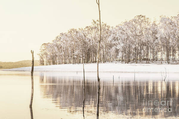 Landscape Art Print featuring the photograph Winters Edge by Jorgo Photography - Wall Art Gallery