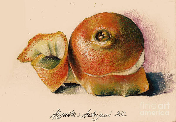 Fruit Art Print featuring the painting Orange..navel by Alessandra Andrisani