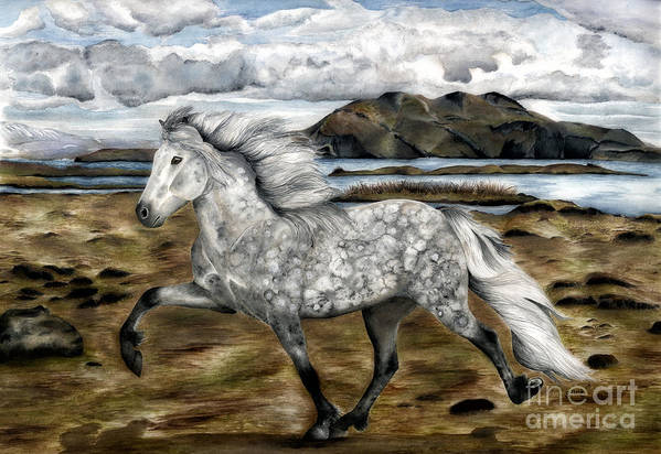 Icelandic Horse Art Print featuring the painting Charismatic Icelandic Horse by Shari Nees