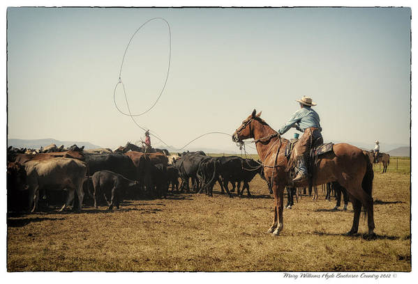 Art Print featuring the photograph 8828 by Mary Williams Hyde