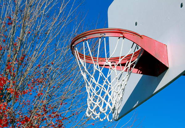 Net Art Print featuring the photograph Basketball Net by Valentino Visentini
