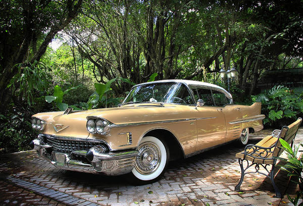Cadillac Art Print featuring the photograph Cadillac by Rudy Umans