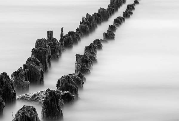 Kelly Point Park Art Print featuring the photograph Calm Across The River by Kunal Mehra