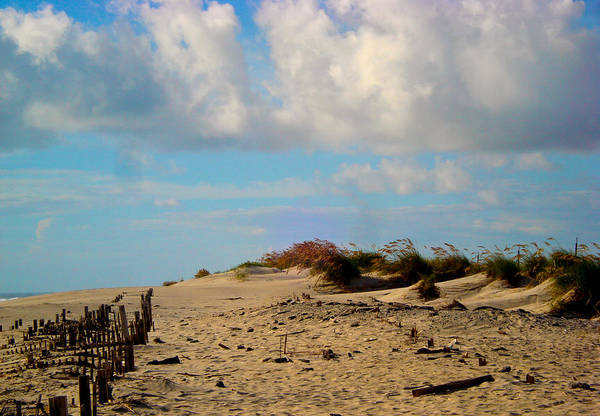 Outer Banks Art Print featuring the photograph Dunes At Obx by Donna Shaw