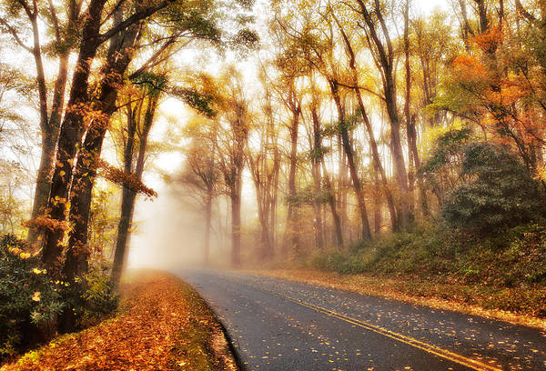 Blue Ridge Parkway Art Print featuring the photograph Foggy Fall Wonderland - Blue Ridge Parkway I by Dan Carmichael