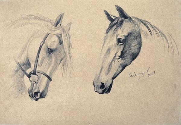 Portraits Art Print featuring the drawing Horses by Stanislav Atanasov