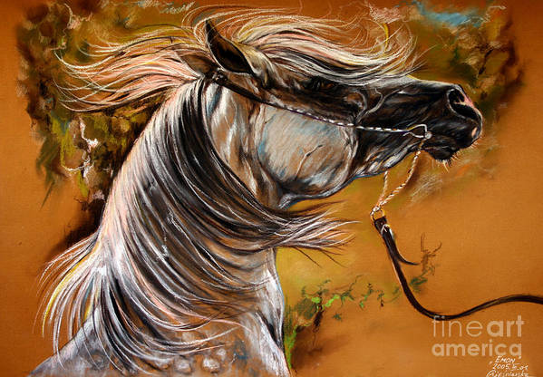 Horse Art Print featuring the drawing Hot Temper by Angel Ciesniarska