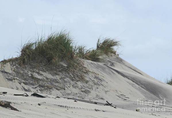 Oregon Inlet Print featuring the photograph Large Dunes by Cathy Lindsey