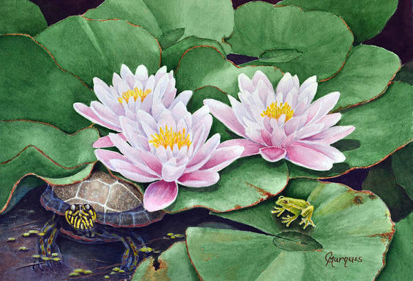 Wild Life Art Print featuring the painting Life Among The Lillie Pads by Colleen Marquis