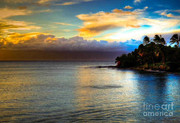 Maui Palm Trees Art Print featuring the photograph Maui Palm Sunset by Kelly Wade