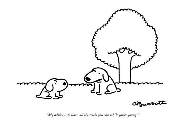 (older Dog Gives Advice To A Younger Dog.) Animals Art Print featuring the drawing My Advice Is To Learn All The Tricks by Charles Barsotti