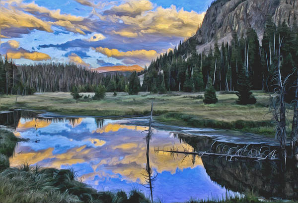 Pond Print featuring the photograph Pondering Reflections by David Kehrli