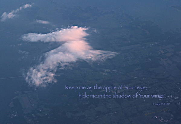 Psalm 17:8 Art Print featuring the photograph Shadow Of Your Wings by Kume Bryant