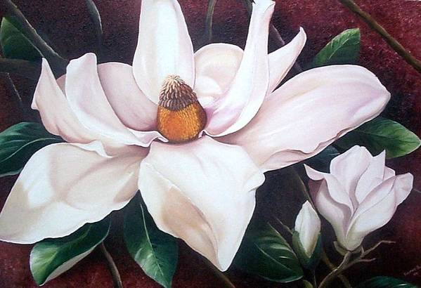 Magnolia Southern Bloom Floral Botanical White Art Print featuring the painting Southern Beauty by Karin Dawn Kelshall- Best
