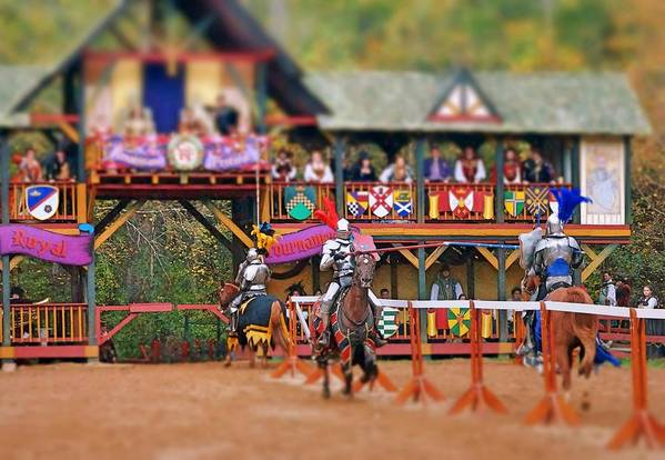 Fine Art Art Print featuring the photograph The Jousters by Rodney Lee Williams