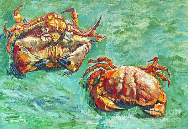 Two Crabs By Vincent Van Gogh Art Print By Roberto