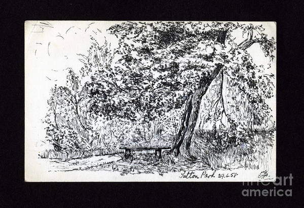 Park Scene Art Print featuring the drawing A Quiet Corner 1958 by John Chatterley