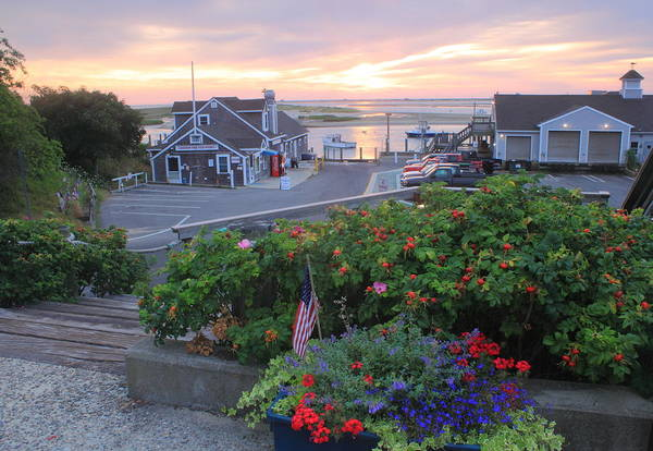 Chatham Art Print featuring the photograph Chatham Fish Pier Summer Flowers Cape Cod by John Burk