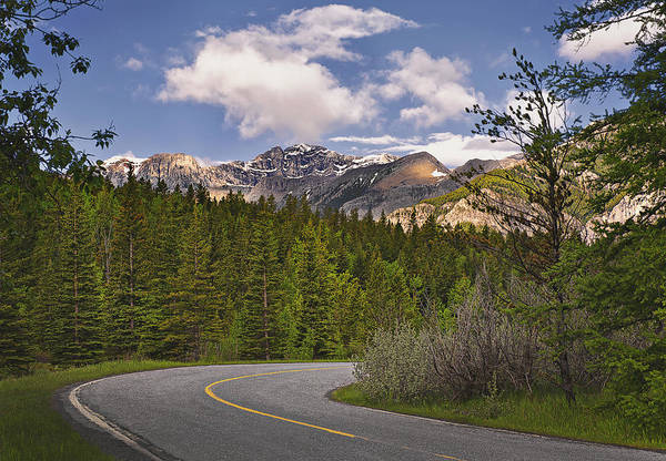 No People Art Print featuring the photograph Forest Road In Kananaskis Country by Tatiana Boyle