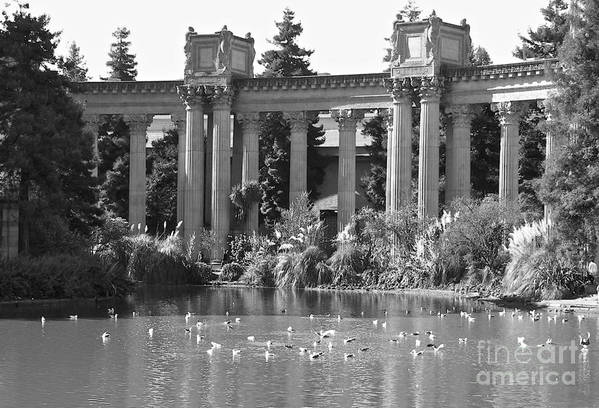 California Art Print featuring the photograph Palace Of Fine Arts by Carol Bradley