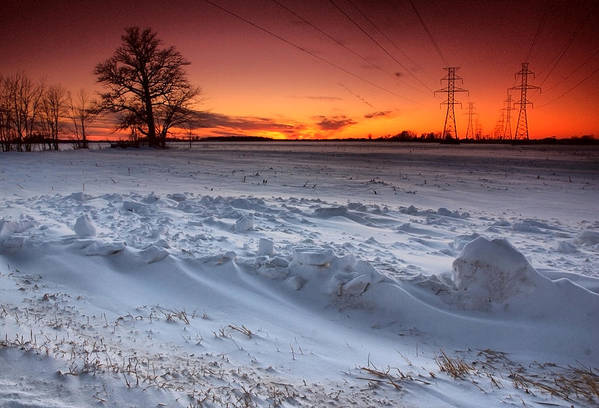Winter Art Print featuring the photograph Powerlines In Winter by Cale Best