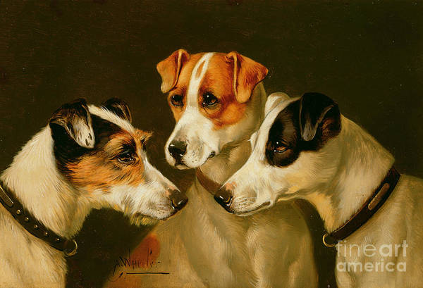 Dog Art Print featuring the painting The Hounds by Alfred Wheeler