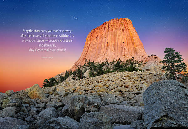 Blue Art Print featuring the photograph Devils Tower by Edwin Verin