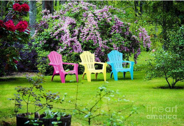 Lawn Chairs Art Print featuring the photograph Back Yard Tranquility by Jim Calarese
