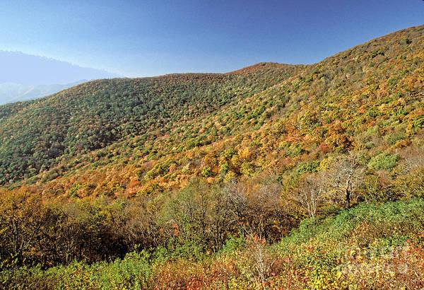 Blue Ridge Mountains Art Print featuring the photograph Blue Ridge Mountains In Autumn by Doug Berry