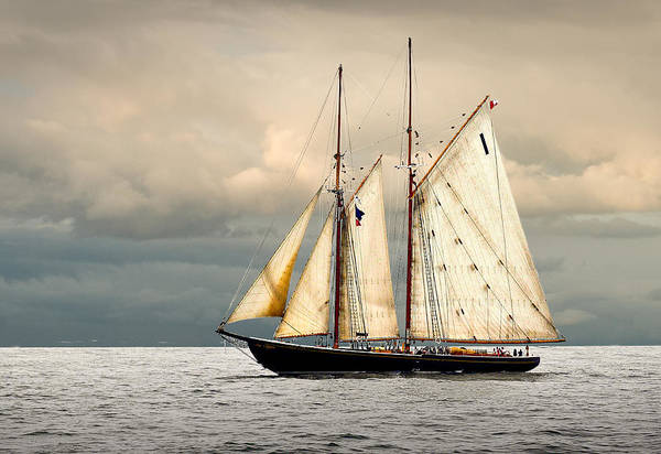 Windjammer Art Print featuring the photograph Bluenose by Fred LeBlanc