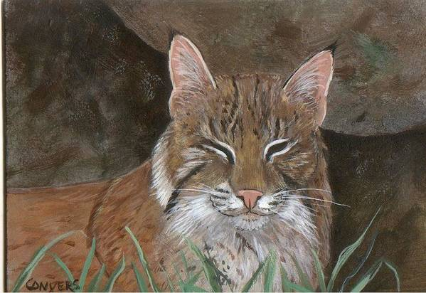 Cat Art Print featuring the painting Bob Cat by Peggy Conyers