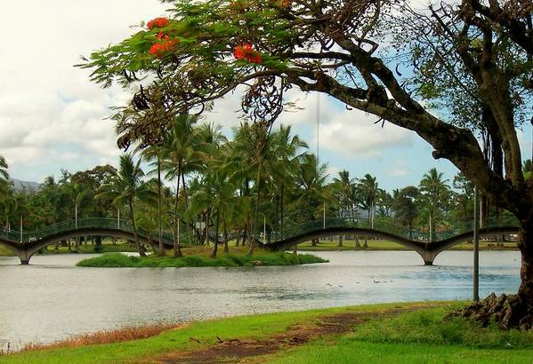 Landscape Art Print featuring the photograph Bridges At Wailoa by Dina Holland