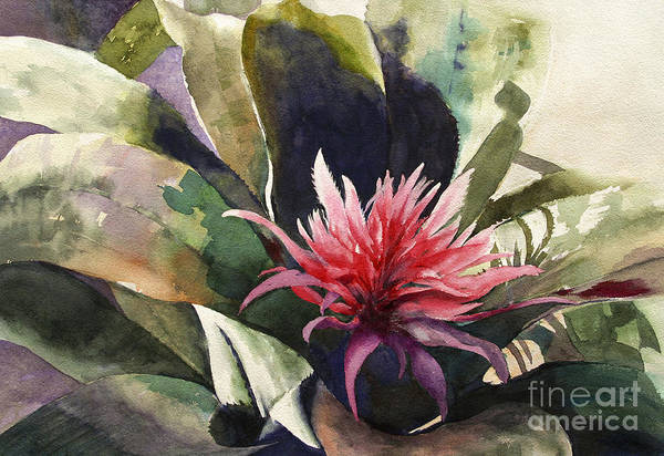 Impressionist On Canvas Art Print featuring the painting Bromiliad by Madeleine Holzberg