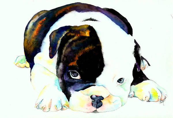 Puppy Art Print featuring the painting Bulldog Puppy by Christy Freeman