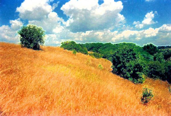 Field Art Print featuring the digital art Bushes On A Hill Ae by Lyle Crump