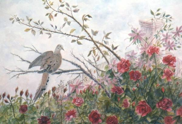 Dove; Roses Art Print featuring the painting Dove And Roses by Ben Kiger