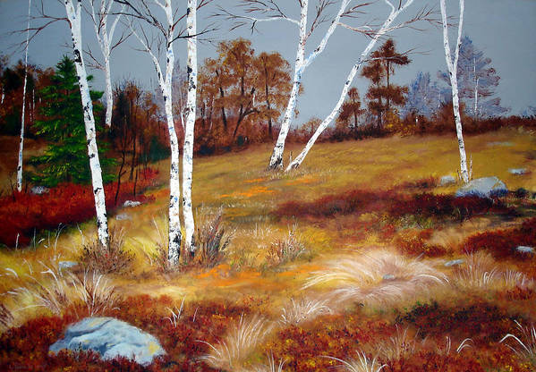 Maine Art Print featuring the painting Fall Birch Trees And Blueberries by Laura Tasheiko