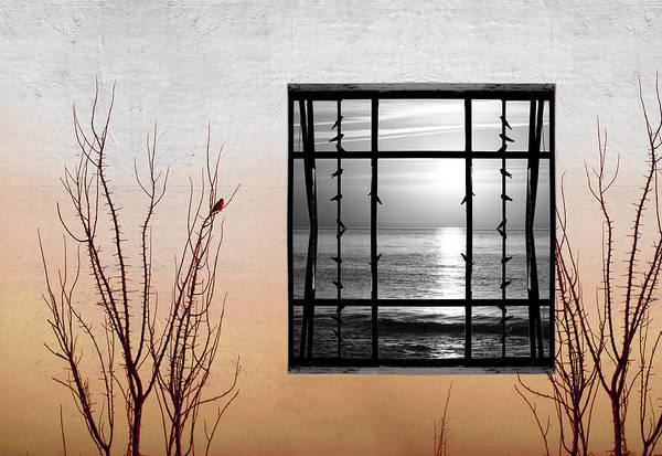 Digital Art Print featuring the photograph Freeze by Munir Alawi